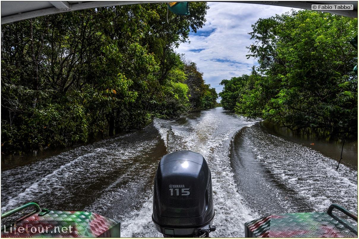 Fabio's LifeTour - Brazil (2015 April-June and October) - Manaus - Amazon Jungle - Parque do Janauary - 1-trip (Rio Solimoes) - 10408 cover