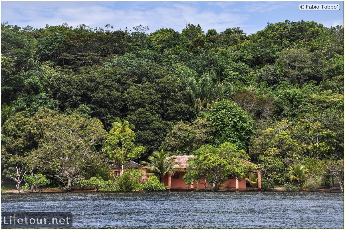 Fabio's LifeTour - Brazil (2015 April-June and October) - Manaus - Amazon Jungle - Parque do Janauary - 1-trip (Rio Solimoes) - 9785