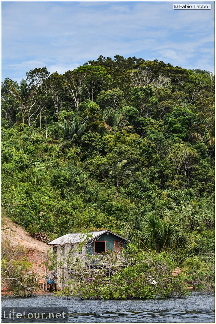 Fabio's LifeTour - Brazil (2015 April-June and October) - Manaus - Amazon Jungle - Parque do Janauary - 1-trip (Rio Solimoes) - 9964