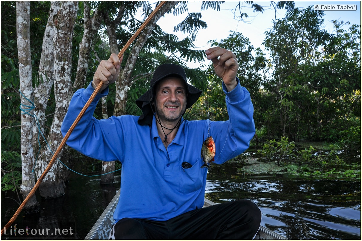Fabio's LifeTour - Brazil (2015 April-June and October) - Manaus - Amazon Jungle - Piranha fishing - 10687