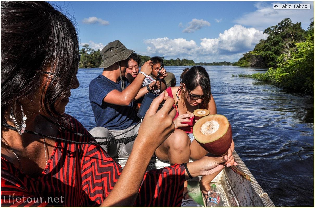Fabio's LifeTour - Brazil (2015 April-June and October) - Manaus - Amazon Jungle - Piranha fishing - 9144
