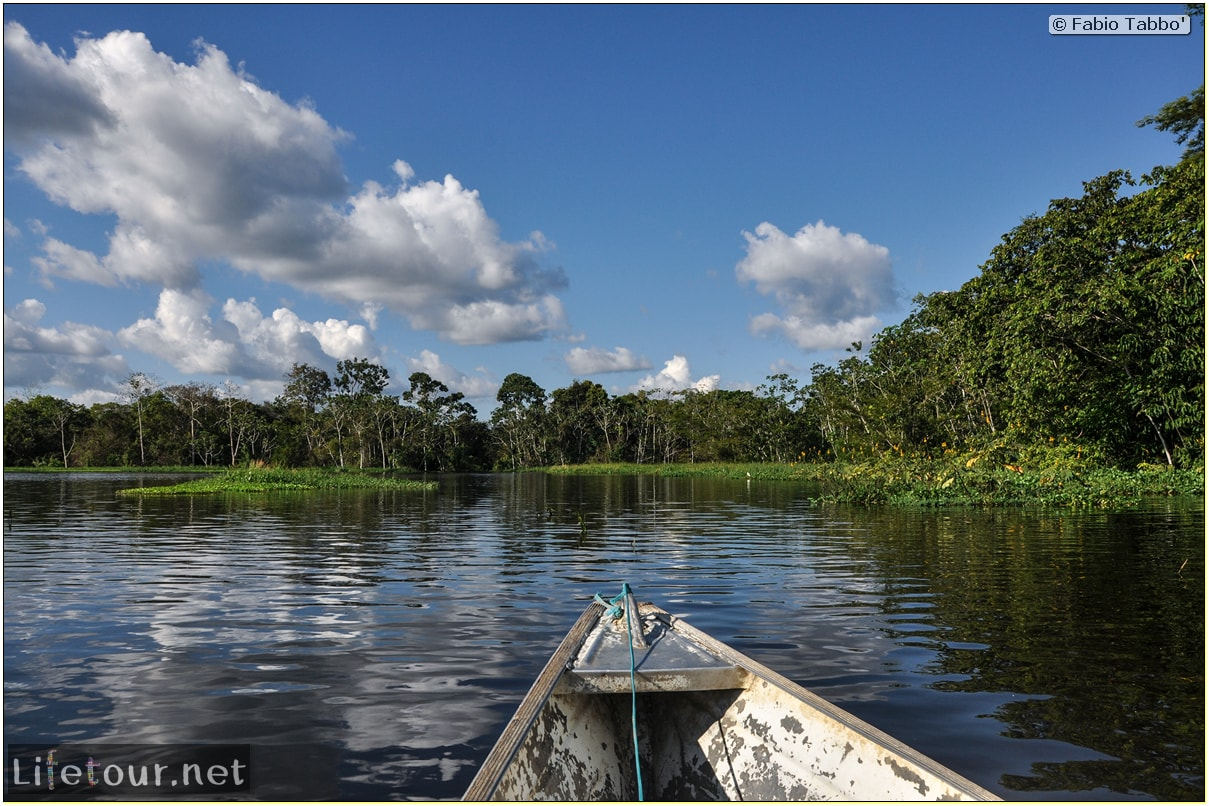 Fabio's LifeTour - Brazil (2015 April-June and October) - Manaus - Amazon Jungle - Piranha fishing - 9383
