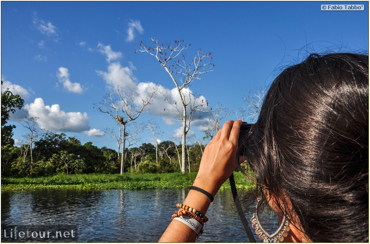 Fabio's LifeTour - Brazil (2015 April-June and October) - Manaus - Amazon Jungle - Piranha fishing - 9853 cover