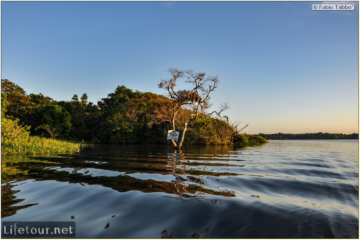 Fabio's LifeTour - Brazil (2015 April-June and October) - Manaus - Amazon Jungle - Sunrise on the Amazon - 10518