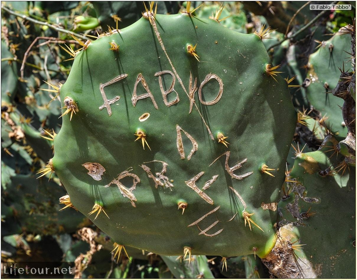 Fabio's LifeTour - Brazil (2015 April-June and October) - Morro Branco - City - 2828