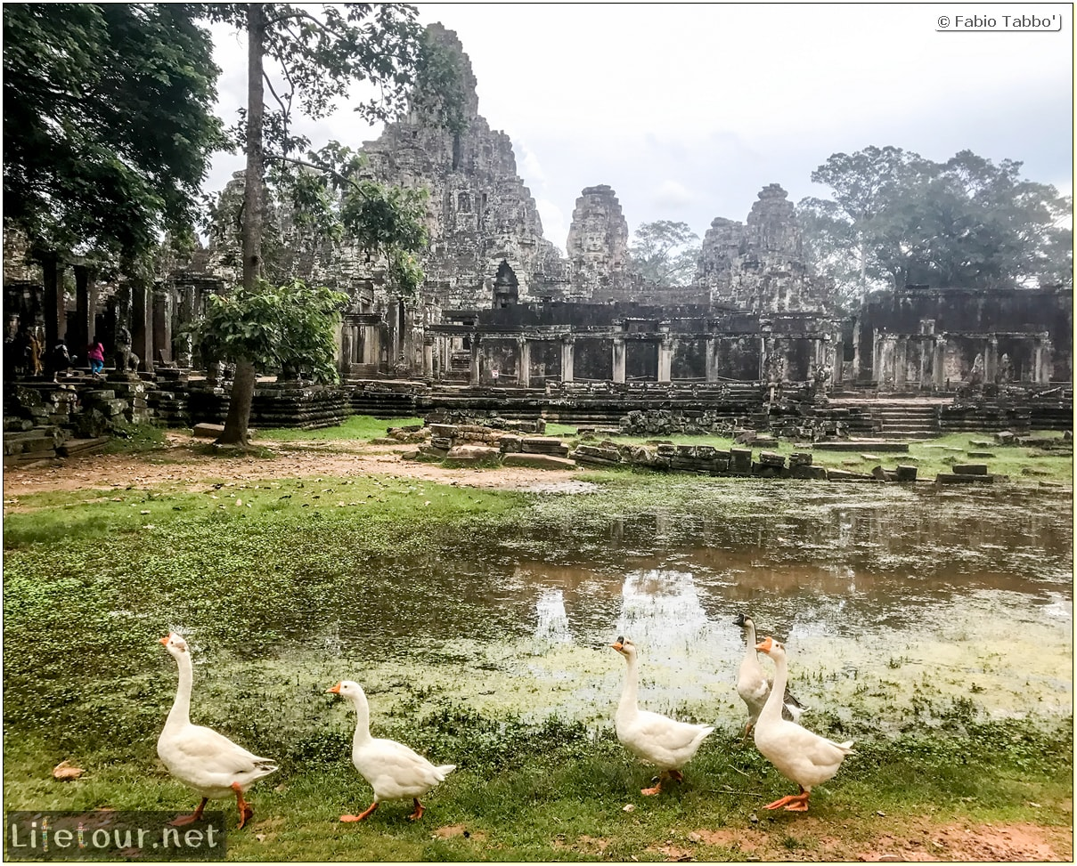 Fabio_s-LifeTour---Cambodia-(2017-July-August)---Siem-Reap-(Angkor)---Angkor-temples---Bayon-temple---18634-cover