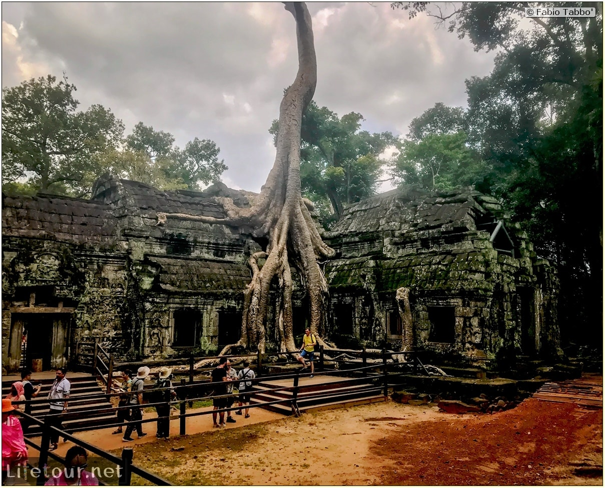 Fabio_s-LifeTour---Cambodia-(2017-July-August)---Siem-Reap-(Angkor)---Angkor-temples---Ta-Prohm-temple---18618