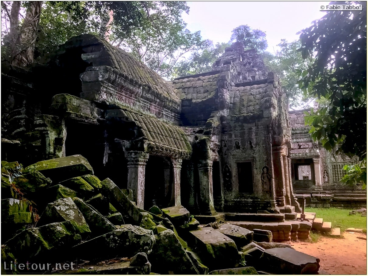 Fabio_s-LifeTour---Cambodia-(2017-July-August)---Siem-Reap-(Angkor)---Angkor-temples---Ta-Prohm-temple---18624
