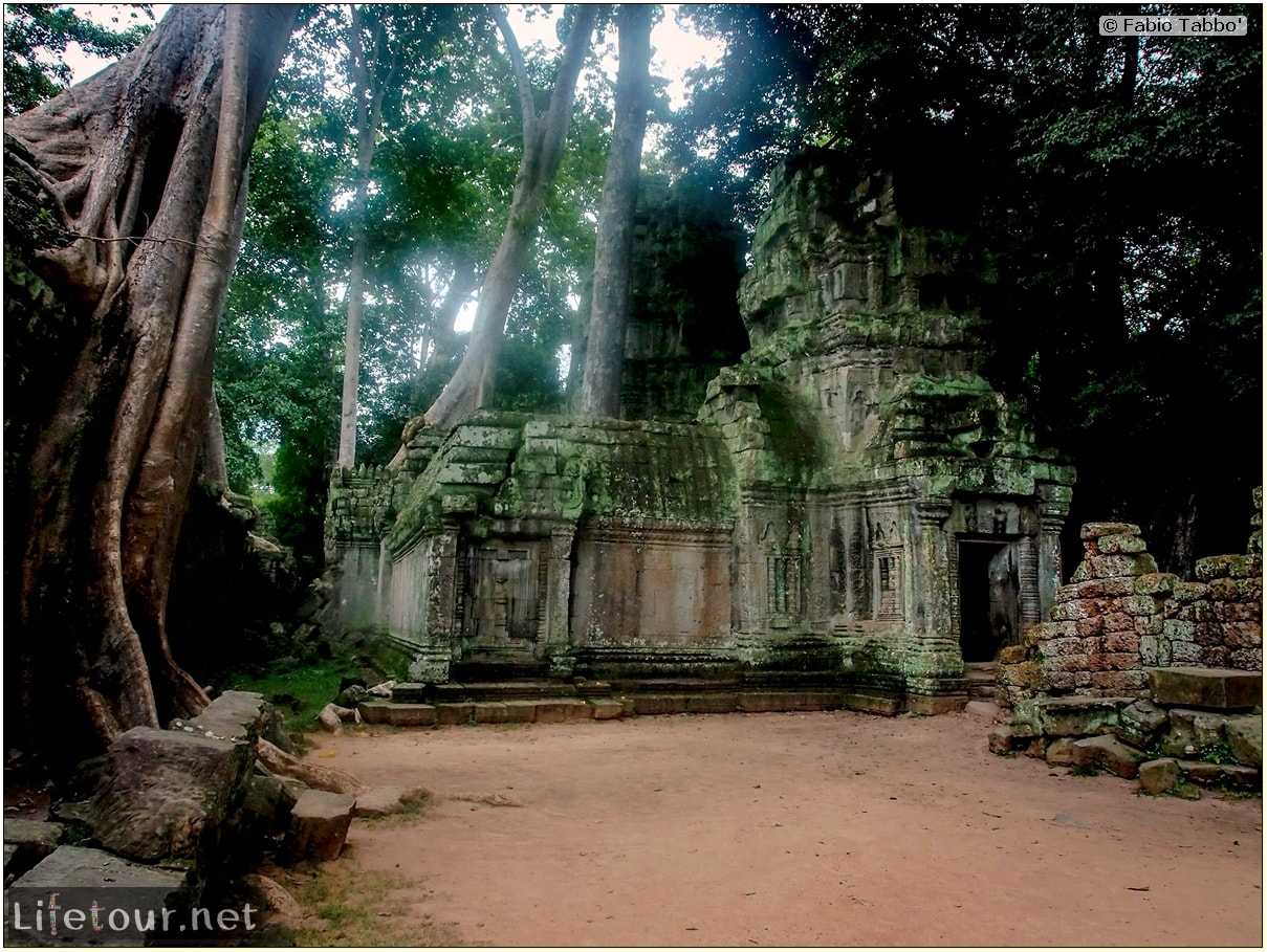 Fabio_s-LifeTour---Cambodia-(2017-July-August)---Siem-Reap-(Angkor)---Angkor-temples---Ta-Prohm-temple---20246