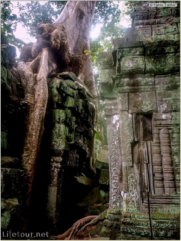 Fabio_s-LifeTour---Cambodia-(2017-July-August)---Siem-Reap-(Angkor)---Angkor-temples---Ta-Prohm-temple---20248