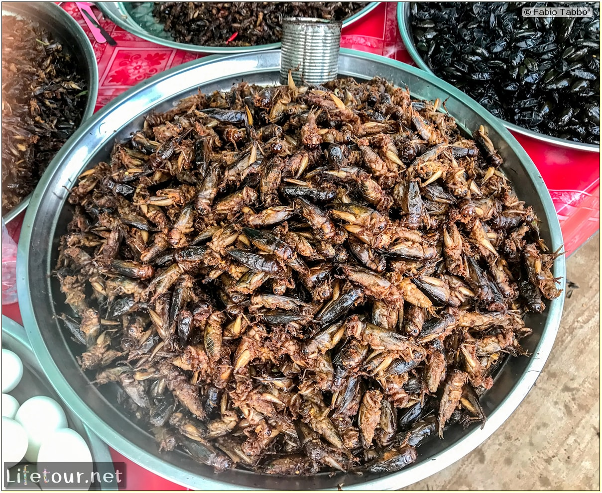 Fabio_s-LifeTour---Cambodia-(2017-July-August)---Skun---Other-edible-insects-(scorpions,-beetles-etc.)---18397