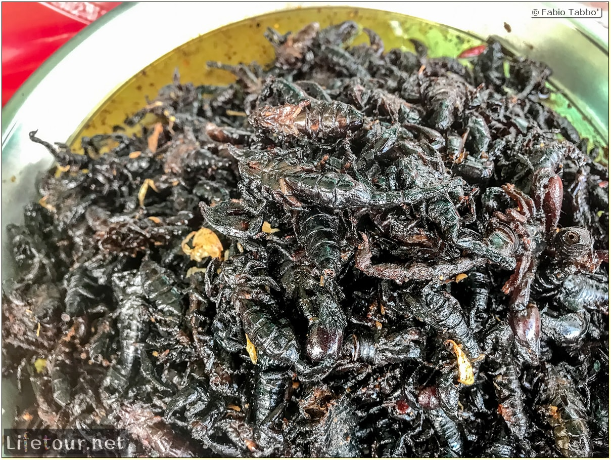Fabio_s-LifeTour---Cambodia-(2017-July-August)---Skun---Other-edible-insects-(scorpions,-beetles-etc.)---18402