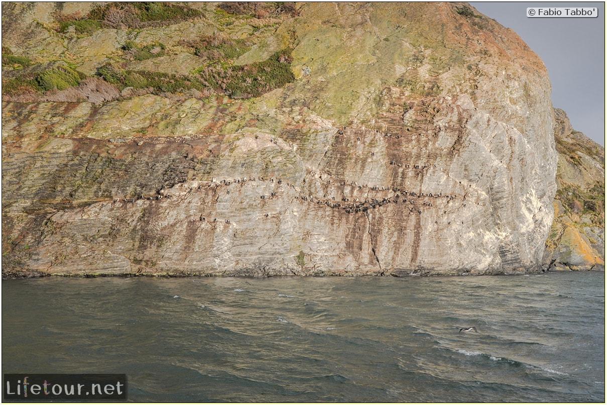 Fabio_s-LifeTour---Chile-(2015-September)---Park-O'higgins-–-glacier-Balmaceda---1--Boat-trip---2115