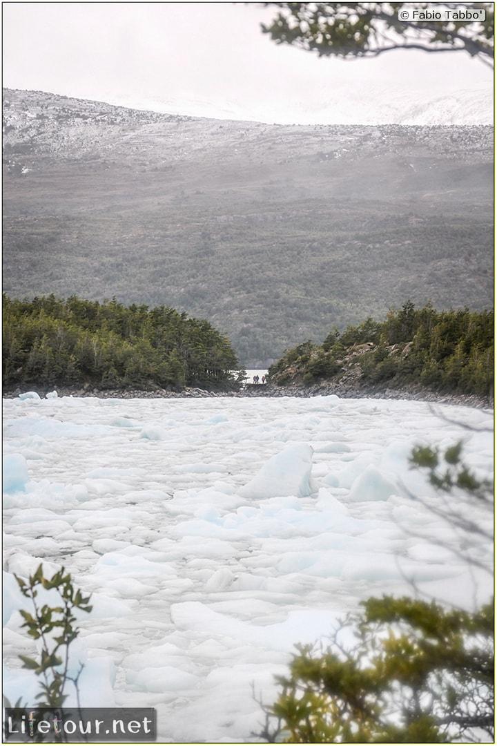 Fabio_s-LifeTour---Chile-(2015-September)---Park-O'higgins-–-glacier-Balmaceda---2--Trekking-to-glacier---8141