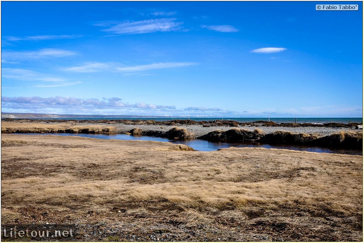 Fabio_s-LifeTour---Chile-(2015-September)---Porvenir---Tierra-del-Fuego---Parque-Penguinos-Rey---4--Erratic-trekking---10776