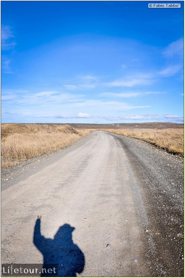 Fabio_s-LifeTour---Chile-(2015-September)---Porvenir---Tierra-del-Fuego---Parque-Penguinos-Rey---4--Erratic-trekking---11290