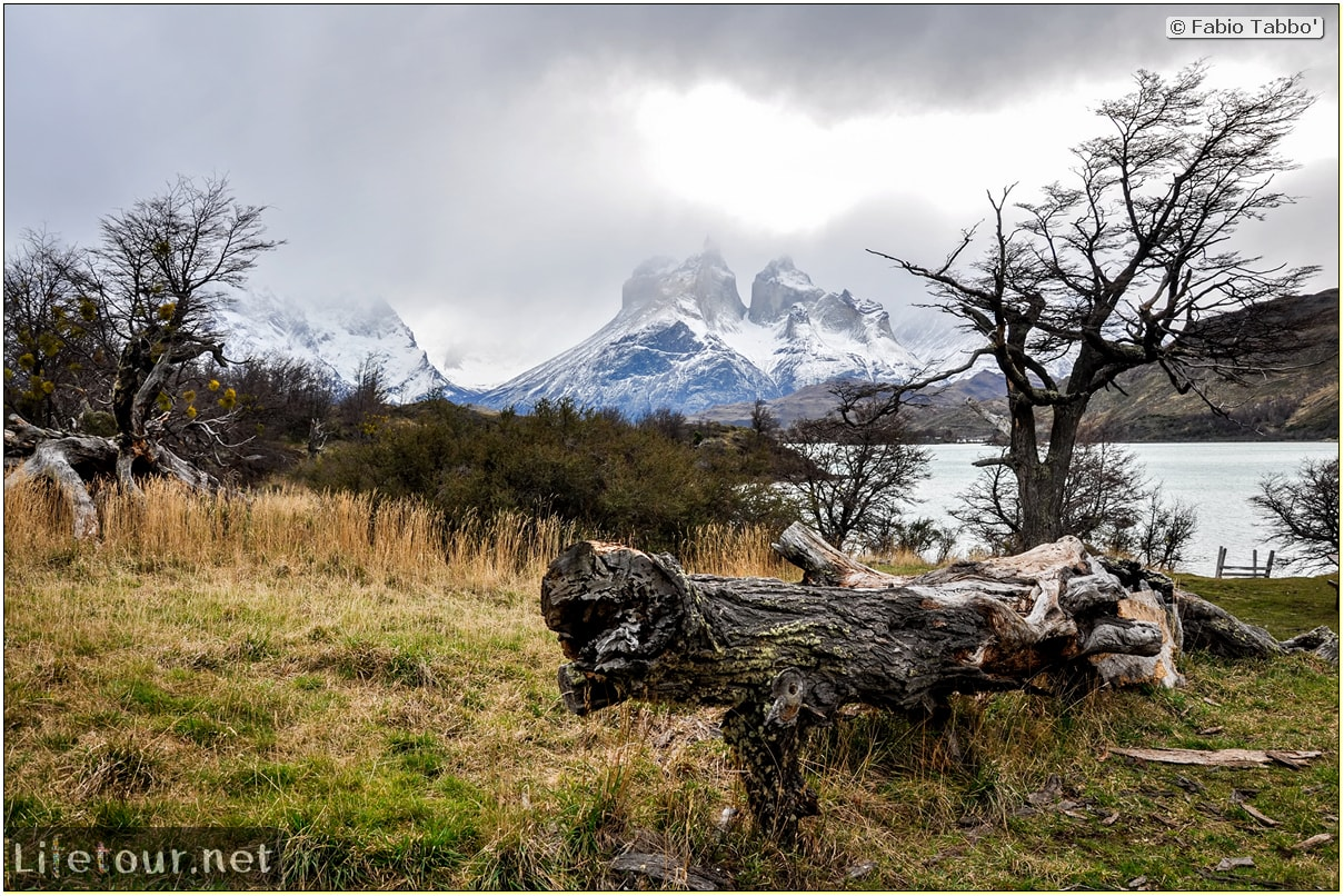 Fabio_s-LifeTour---Chile-(2015-September)---Torres-del-Paine---Serrano-river-tourist-village---12130