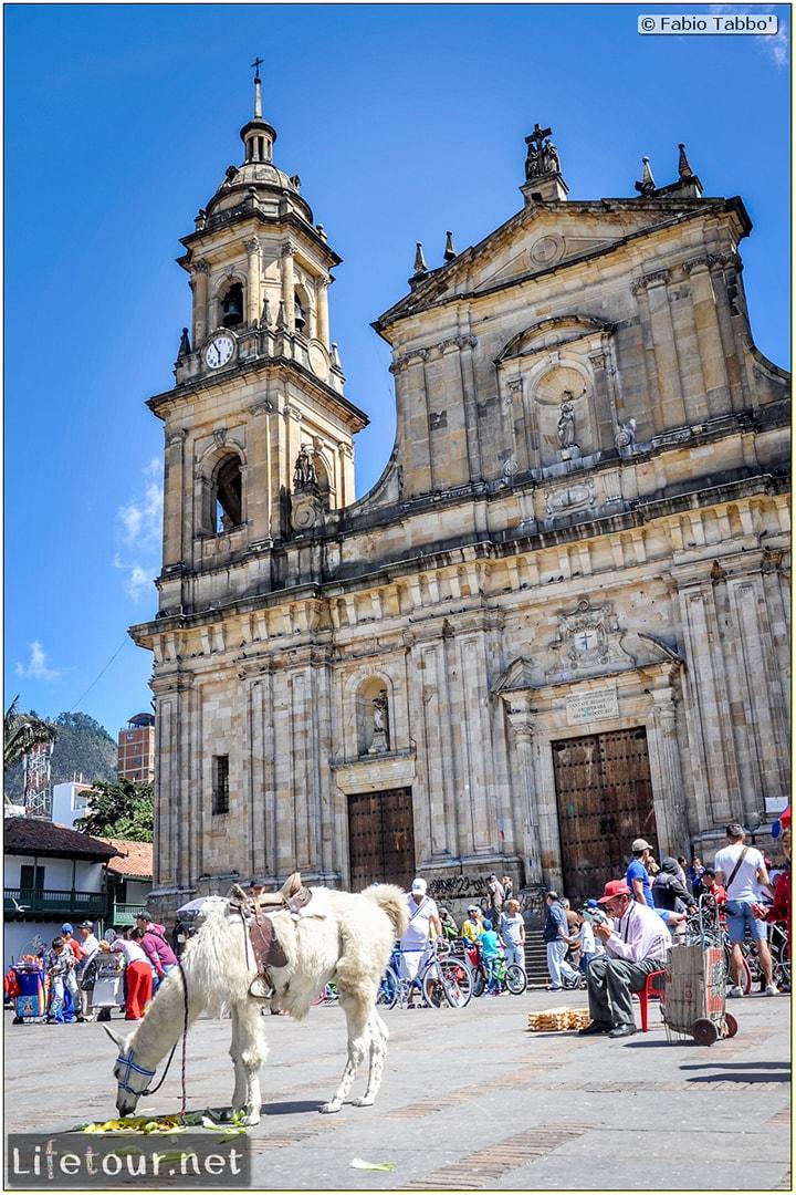 Fabio_s-LifeTour---Colombia-(2015-January-February)---Bogota_---Candelaria---Bolivar-Plaza---5405
