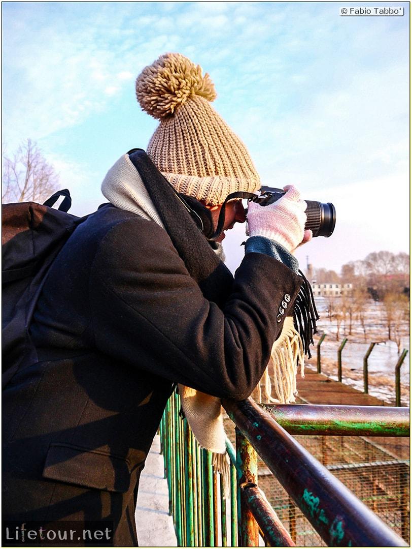 Fabio's LifeTour - China (1993-1997 and 2014) - Harbin (2014) - Siberian Tiger Park - 16031