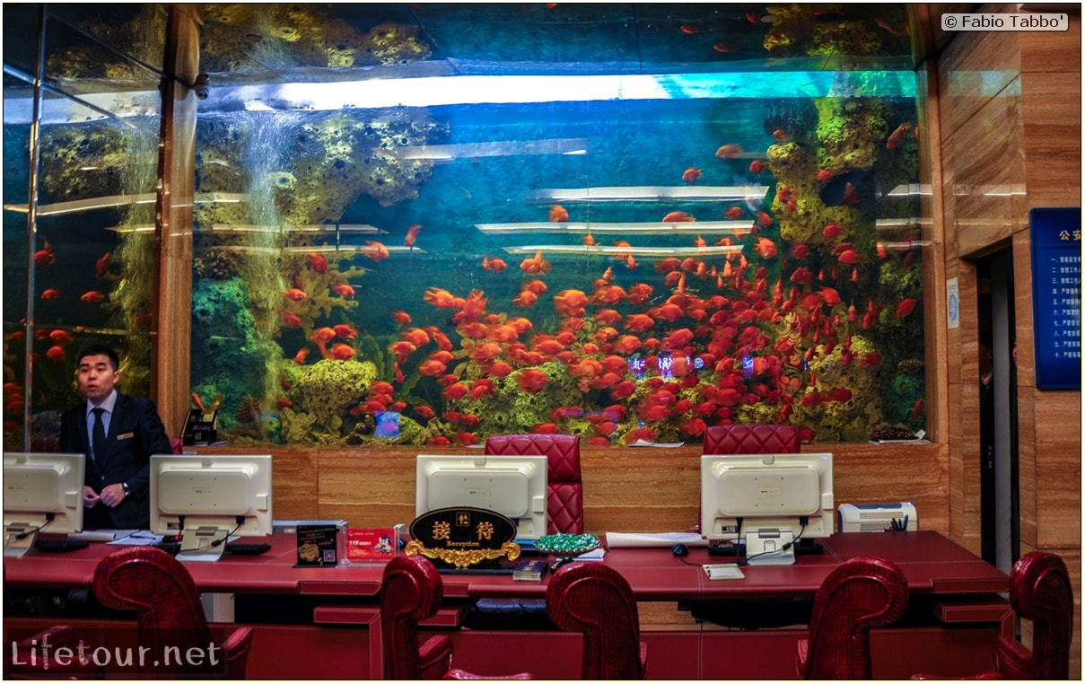 Fabio's LifeTour - China (1993-1997 and 2014) - Shen Yang (2014) - Acquarium Hotel - 1624