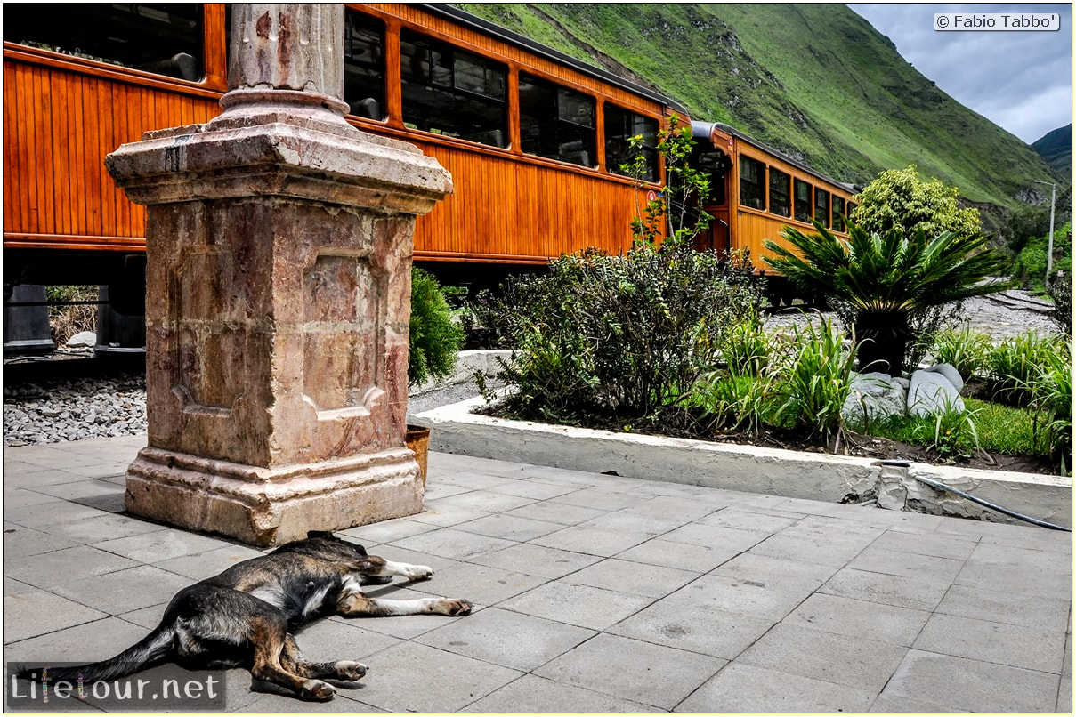 Fabio_s-LifeTour---Ecuador-(2015-February)---Alausi---El-Nariz-del-Diablo-(steam-train-ride)---12315 COVER