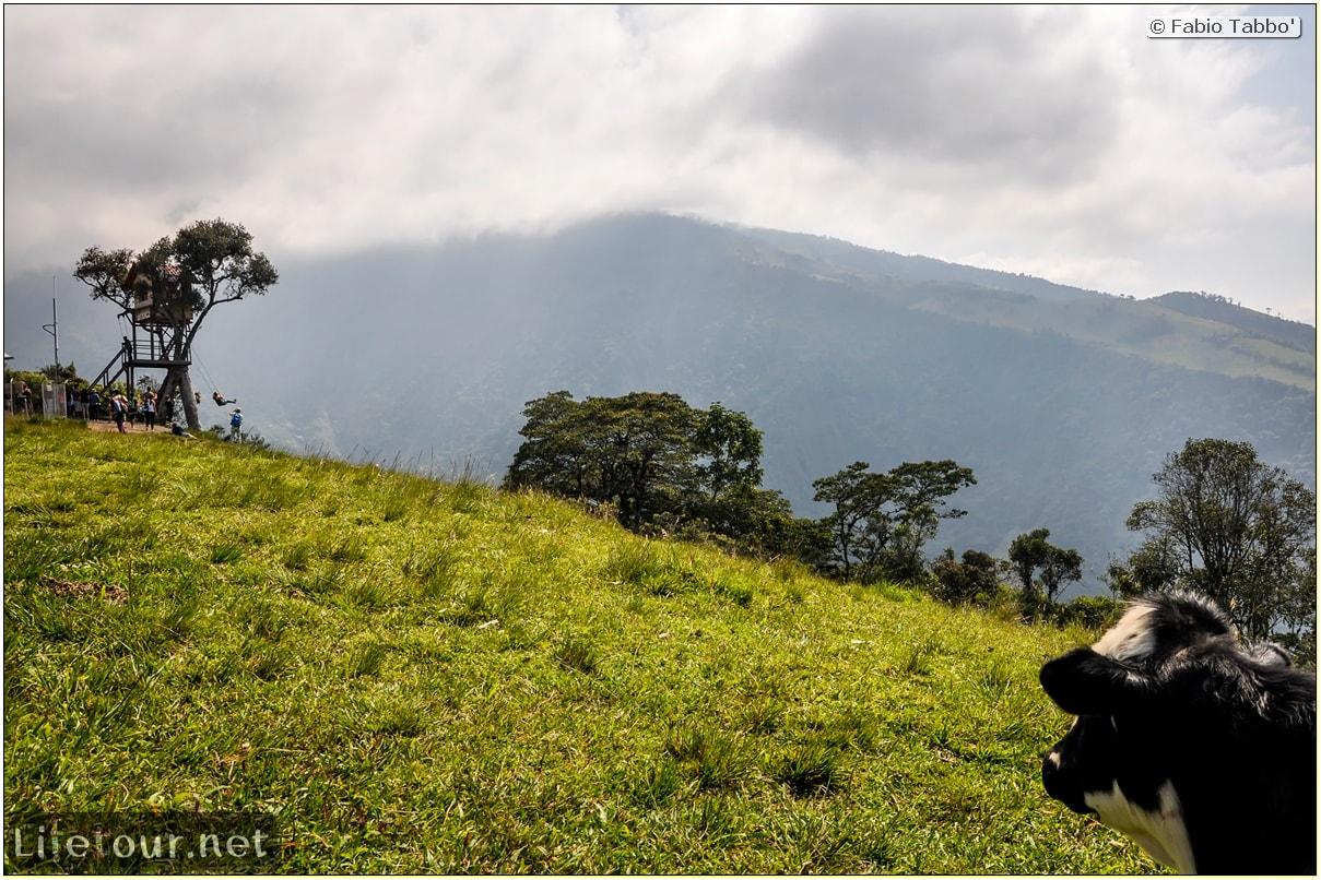 Fabio_s-LifeTour---Ecuador-(2015-February)---Banos---Casa-de-Arbol---11833