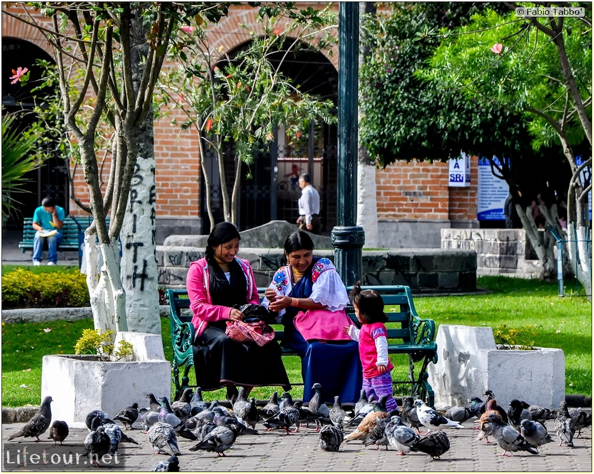 Fabio_s-LifeTour---Ecuador-(2015-February)---Ibarra---Parque-Pedro-Moncayo---10604