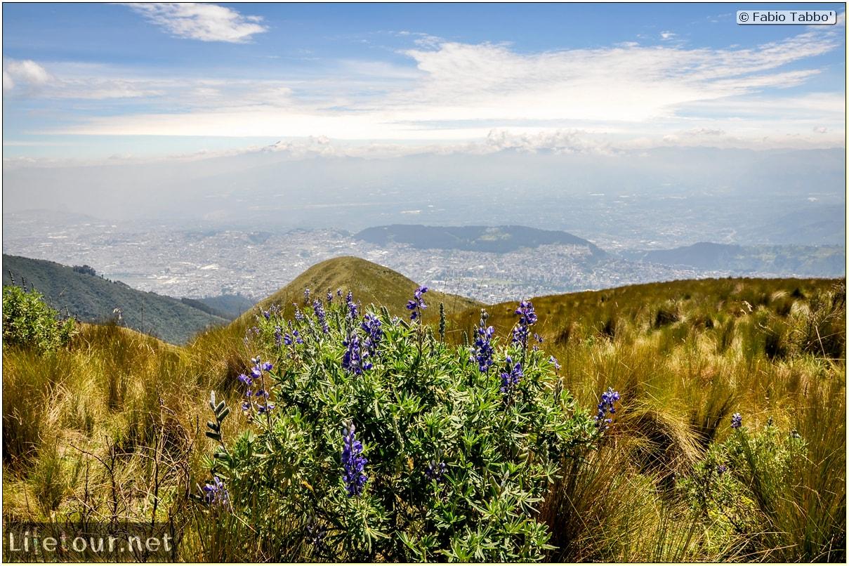 Fabio_s-LifeTour---Ecuador-(2015-February)---Quito---Teleferico---4--Trekking---12224