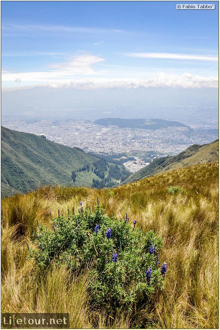 Fabio_s-LifeTour---Ecuador-(2015-February)---Quito---Teleferico---4--Trekking---12391