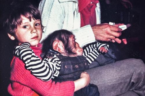 Fabio's LifeTour - France (1975, 1980, 90s) - Paris - Circus of Stains-Dugny 1979 - 12586 COVER