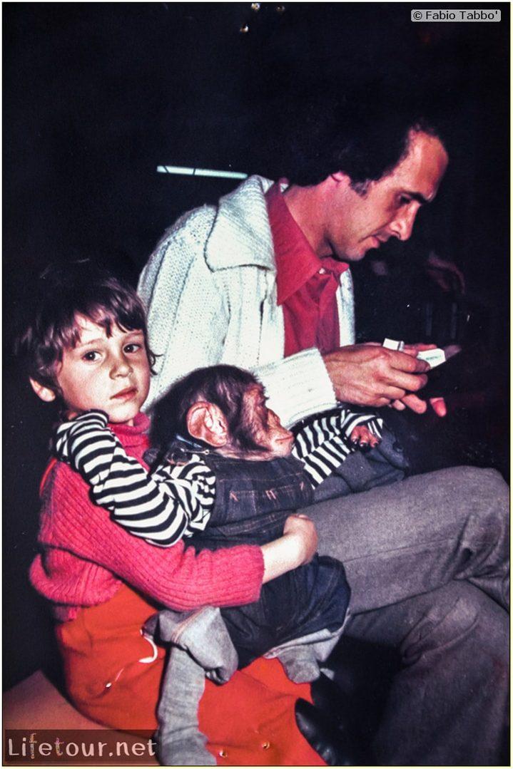 Fabio's LifeTour - France (1975, 1980, 90s) - Paris - Circus of Stains-Dugny 1979 - 12586
