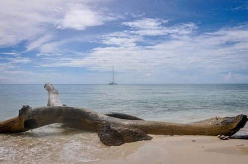 Dominican-Republic-Isla-Saona-Isla-Saona-4734 COVER