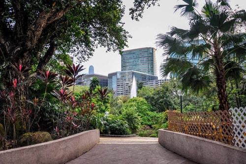 Hong-Kong-Tourism-Kowloon-Park-8014 COVER
