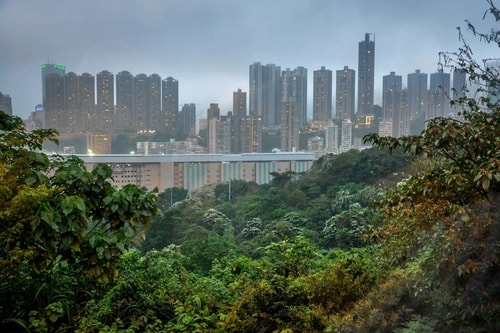 Hong-Kong-Tourism-Victoria-Peak-11286 COVER