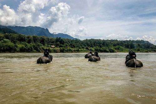 Laos-Luang-Prabang-Tourism-Elephant-Village-River-cruising-and-trekking-18892 COVER