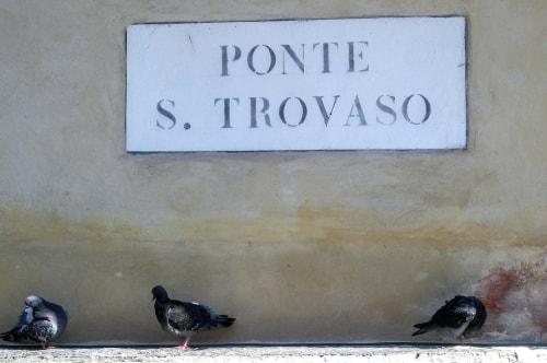 Italy -Veneto-Venice-Dorsoduro-Squeri di San Trovaso-14096 COVER