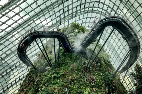 Singapore-Gardens-by-the-Bay-Cloud-Forest-17937 COVER