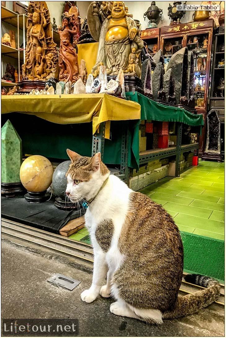 Taiwan 2018-Jiufen-Jiufen Old Street-105