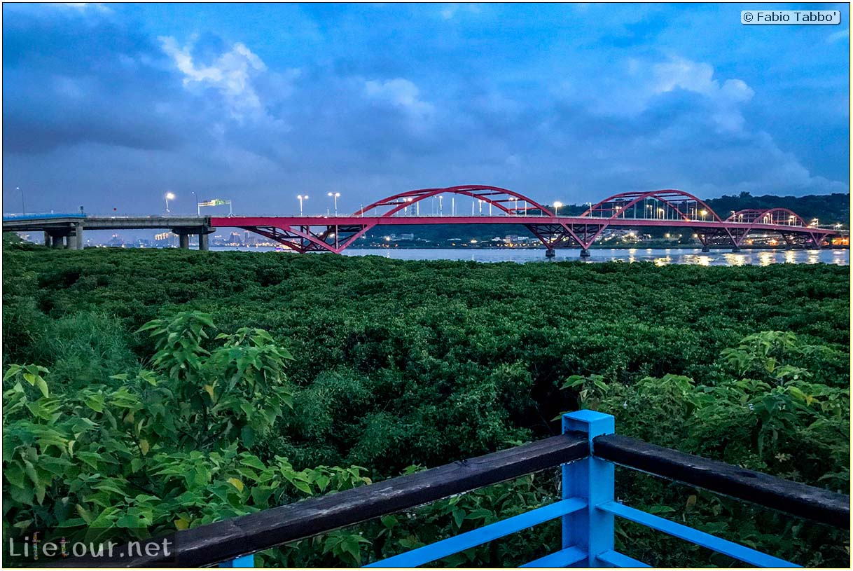 Taiwan 2018-New Taipei City-Hongshulin Mangrove Ecowalk-59