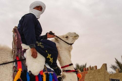 Tunisia -Tataouine-Ksar Hadada-236 COVER